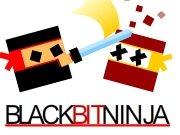 النينجا السوداء