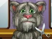 قص شعر القط توم