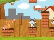 لعبة غذاء القطة | العاب ذكاء