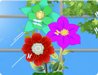 تصميم الزهور