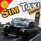 سائق التاكسي