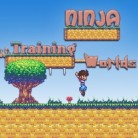 عالم تدريب النينجا