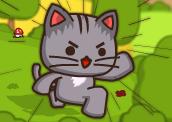 حرب جيوش القطط
